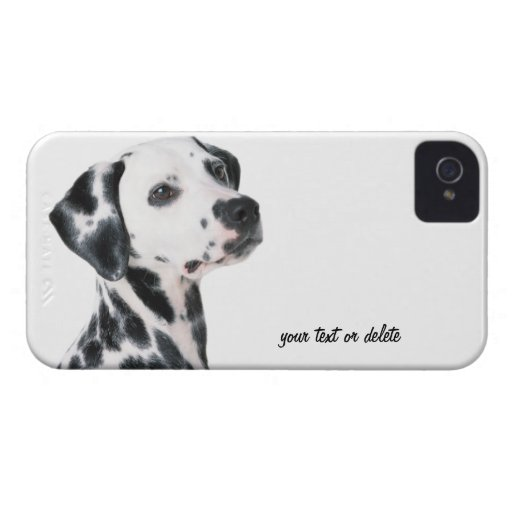 Foto hermosa del perro dálmata, regalo iPhone 4 Case-Mate carcasas
