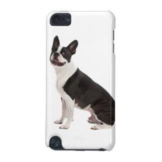 Foto hermosa del perro de Boston Terrier, regalo Funda Para iPod Touch 5G