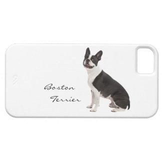 Foto hermosa del perro de Boston Terrier, regalo iPhone 5 Funda
