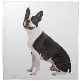 Foto hermosa del perro de Boston Terrier Servilletas