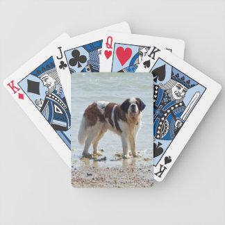 Foto hermosa del perro de St Bernard en la playa Baraja Cartas De Poker