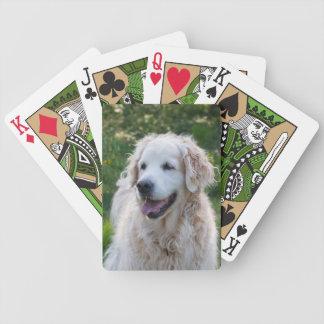 Foto hermosa del perro del golden retriever, regal baraja cartas de poker