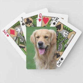 Foto hermosa del perro del golden retriever, regal barajas de cartas