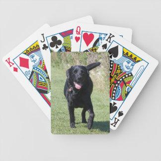 Foto hermosa del perro del labrador retriever, reg cartas de juego