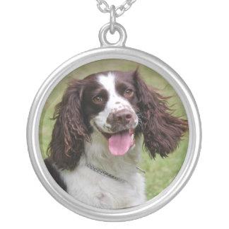 Foto hermosa del perro del perro de aguas de salta pendientes
