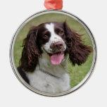Foto hermosa del perro del perro de aguas de salta ornaments para arbol de navidad