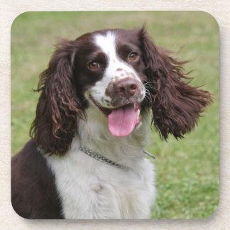 Foto hermosa del perro del perro de aguas de salta posavasos de bebidas