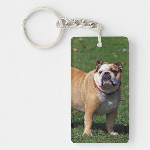 Foto hermosa del perro inglés del dogo, regalo llavero rectangular acrílico a una cara