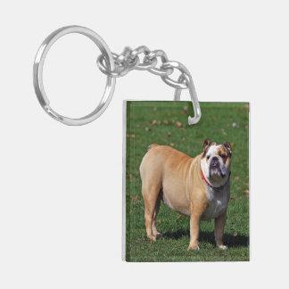 Foto hermosa del perro inglés del dogo, regalo llavero cuadrado acrílico a doble cara