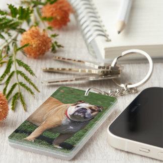 Foto hermosa del perro inglés del dogo, regalo llavero rectangular acrílico a doble cara