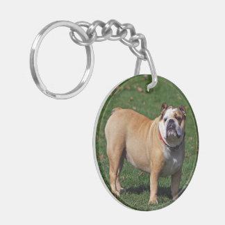 Foto hermosa del perro inglés del dogo, regalo llavero redondo acrílico a doble cara