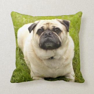Foto hermosa del perro lindo del barro amasado, cojín
