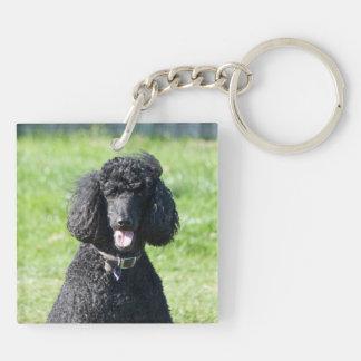 Foto hermosa del perro negro del caniche estándar, llavero cuadrado acrílico a doble cara