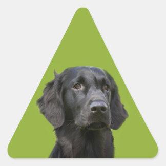 Foto hermosa del perro perdiguero del negro pegatina triangular