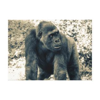 Foto hermosa del primate del gorila impresiones en lienzo estiradas