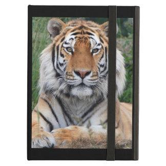 Foto hermosa del primer del retrato del tigre, reg