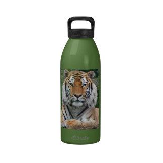 Foto hermosa del primer del retrato del tigre reg botella de agua reutilizable