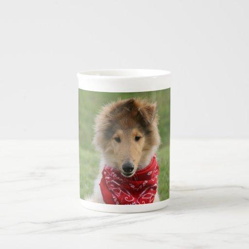 Foto hermosa linda áspera del perro de perrito del taza de té