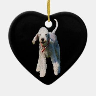 Foto hermosa linda del perro de Bedlington Terrier Adorno Para Reyes