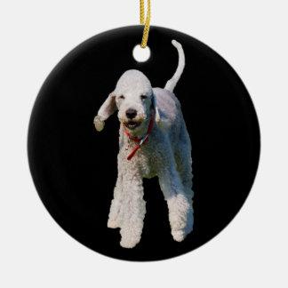 Foto hermosa linda del perro de Bedlington Terrier Ornamentos De Reyes Magos