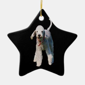 Foto hermosa linda del perro de Bedlington Terrier Ornamente De Reyes