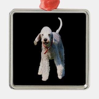Foto hermosa linda del perro de Bedlington Terrier Ornamento De Navidad