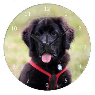 Foto hermosa linda del perro de perrito de Terrano Reloj Redondo Grande