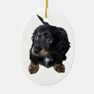 Foto hermosa linda del perro de perrito del adorno ovalado de cerámica