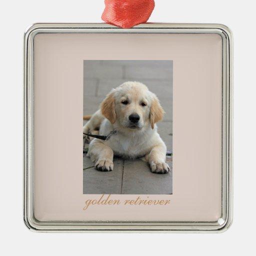 Foto hermosa linda del perro de perrito del golden adorno cuadrado plateado