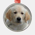 Foto hermosa linda del perro de perrito del golden adorno redondo plateado