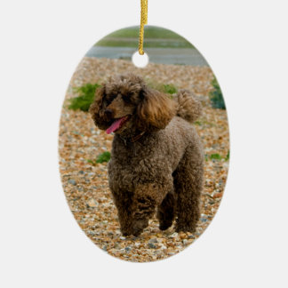 Foto hermosa miniatura del perro de caniche en la adorno navideño ovalado de cerámica
