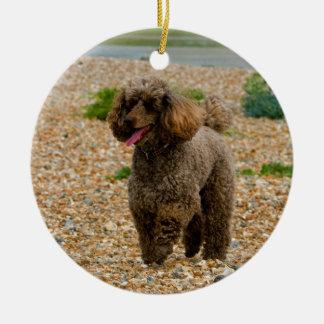 Foto hermosa miniatura del perro de caniche en la adorno navideño redondo de cerámica