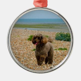 Foto hermosa miniatura del perro de caniche en la adorno navideño redondo de metal