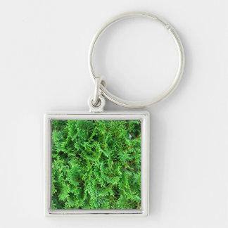 Foto imperecedera colorida verde del arte del seto llaveros personalizados