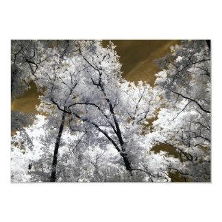 """Foto infrarroja de árboles invitación 5"""" x 7"""""""