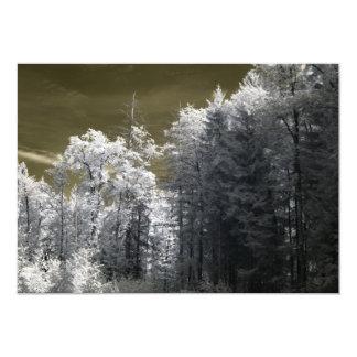 """Foto infrarroja de un bosque viejo invitación 5"""" x 7"""""""