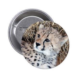 Foto linda de Cub del guepardo Pin Redondo 5 Cm