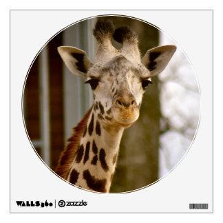 Foto linda de la jirafa vinilo decorativo