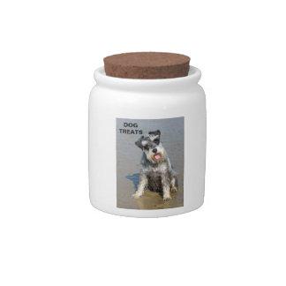 Foto linda del perro miniatura del Schnauzer en la Plato Para Caramelo