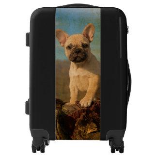 Foto linda del vintage del perrito del dogo maletas