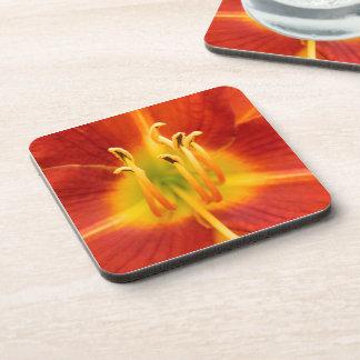 Foto llameante anaranjada roja de la macro del lir posavaso