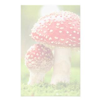 Foto macra de la amanita Muscaria en bosque Papelería