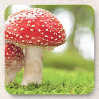 Foto macra de la amanita Muscaria en bosque Posavasos De Bebida