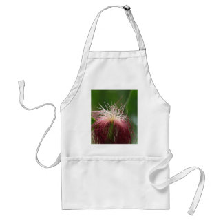 Foto macra de una flor femenina del maíz delantal