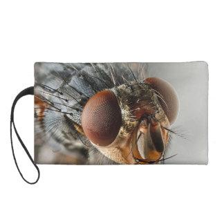 Foto macra de una mosca