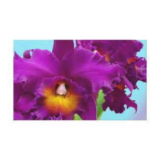 Foto magenta envuelta de la orquídea de la lona impresión en lienzo