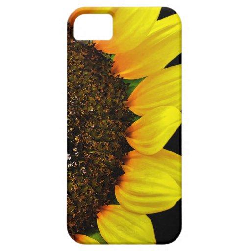 Foto magnífica de la macro del girasol iPhone 5 Case-Mate cobertura
