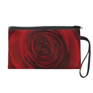 Foto magnífica de la macro del rosa rojo
