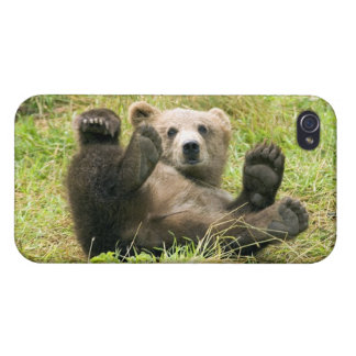 Foto marrón linda del cachorro de oso grizzly, reg iPhone 4/4S carcasas