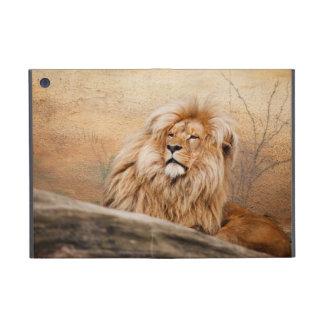 Foto masculina del león iPad mini protectores